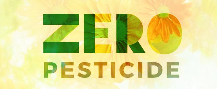 Jardiner sans pesticides Esquibien Audierne