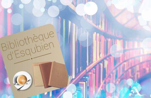 Bibliothèque d'Esquibien
